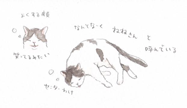 IMG_20160708_0001